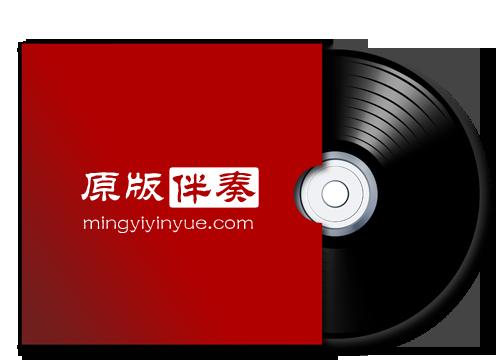 青春不痛-原版伴奏下载【320Kbps立体声伴奏】